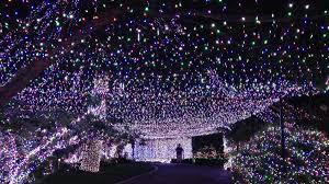 lights familys christmas display sets world record wemu decorating