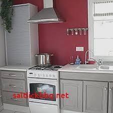 idee meuble cuisine leroy merlin meuble cuisine luxury gris s de peinture newsindo co