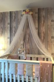 Canopy Net For Bed by Best 25 Canopy Over Crib Ideas On Pinterest Cute Room Ideas