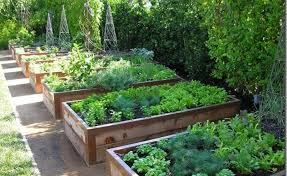Border Ideas For Gardens Wonderful Vegetable Garden Border Ideas Garden Ideas And Garden