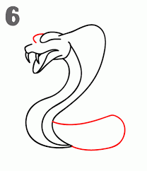 how to draw a cobra step by step
