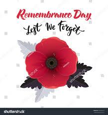 vector illustration bright poppy flower remembrance stock vector