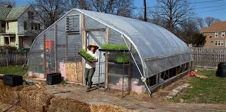 Urban Gardening Philadelphia - urban farming is booming but what does it really yield ensia