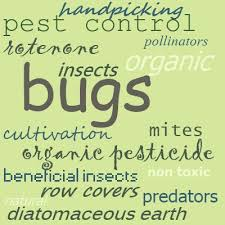 Gardening Pest Control - garden pests insects microorganisms and four legged pests
