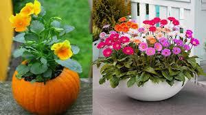 Unique Plant Pots by Unique Flower Pot Design And Painting Ideas Diy Painted Flower