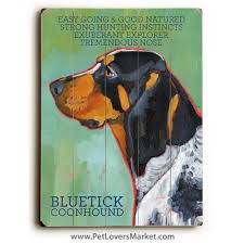 bluetick coonhound with cats coonhound pictures bluetick coonhound dog painting