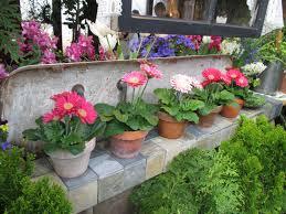 Spring Flower Garden Awesome Spring Flower Show Olbrich Rotary Botanical Gardens