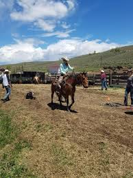 Seeking Ranch Www Ranchworldads Images Listings 1603963754 5