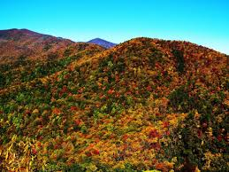 Why Fall Is The Best Season 30 Reasons Why Autumn Is The Best Season To Get Outside In Asheville