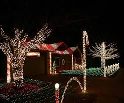 christmas christmas lights on outdoor trees for tree branches