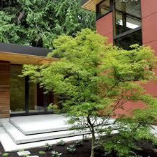 Japanese Patio Design Japanese Patio Garden Design Landscaping Gardening Ideas