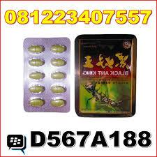 agen black ant king obat kuat pria di bandung antar gratis