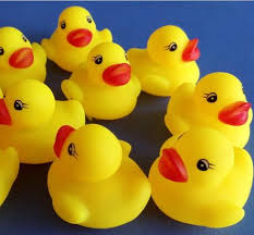 where to buy duck tiny rubber ducks