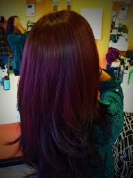 light brown hair with red purple highlights 1000 images about hair