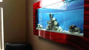 fish tank wall mounted fish tank aquarium tanks aquariums for sale