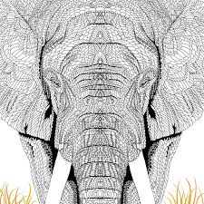 menagerie animal portraits colour richard merritt claire