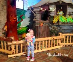 5 tips for great wolf lodge