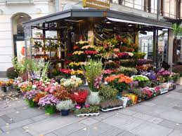 flower stand flower stand on the square picture of stephansplatz vienna