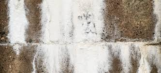 How To Clean A Concrete Patio by How To Remove Concrete Efflorescence Doityourself Com