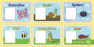 editable class group signs minibeasts minibeasts group