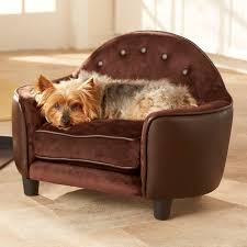 10 crazy pet bed designs that are fun and stylish