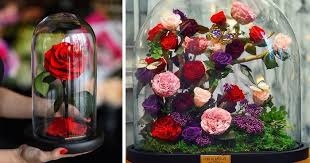 The Forever Rose Real U201cbeauty And The Beast U201d Roses Exist And They U0027ll Last For 3