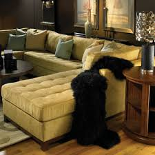 Norwalk Furniture Sleeper Sofa Homefurnishings Com Candice Olson Helps You Pick The Perfect Sofa
