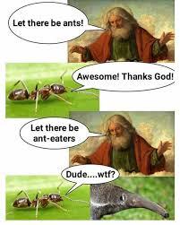 Anteater Meme - dopl3r com memes let there be ants awesome thanks god let