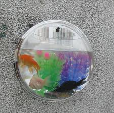 How To Decorate Pot At Home by New Home Decoration Pot Wall Hanging Mount Bubble Aquarium Bowl
