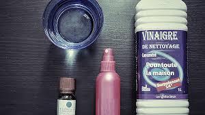 enlever odeur de cuisine enlever odeur de cuisine beautiful odeur cuisine dsodorisant