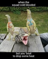 Meme Monitor - i love monitor lizards meme by matthew tims memedroid
