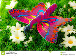 colorful butterfly on flowers stock photos image 34991213