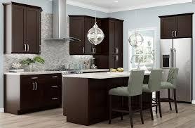 mocha kitchen cabinets sanoma mocha birch kitchen cabinets detroit mi cabinets