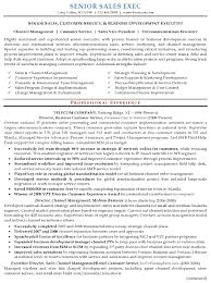 business development executive resume resume sle 16 senior sales executive resume career resumes