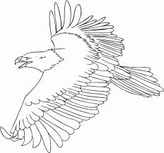 bald eagle coloring pages regarding motivate to color an image