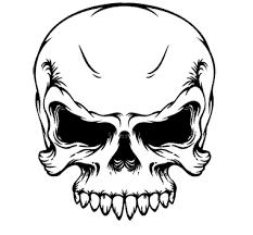 Amazing Skull - 10 amazing skull vector designs clip library