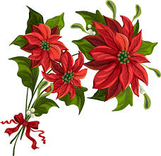 poinsettia clipart collection