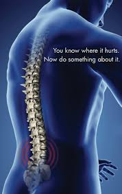 dr marc gray suntree chiropractic melbourne fl