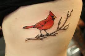 cardinal tattoo on side rib