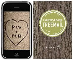 initials carved in tree so cool country living tree carving app design sponge