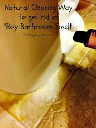 Best Thing To Clean Bathroom Tiles Best 25 Bathroom Cleaning Ideas On Pinterest Bathroom Cleaning
