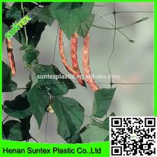 plant climbing frame plant climbing frame suppliers and