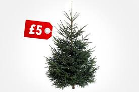 ikea triggers tree price war with 6 foot nordman firs