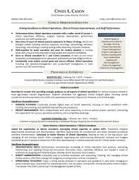 Sample Real Estate Resume Writer Resume Sample Resume For Your Job Application