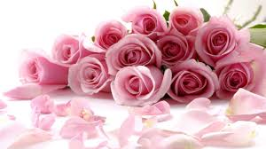 beautiful bouquet of flowers beautiful flowers bouquet images