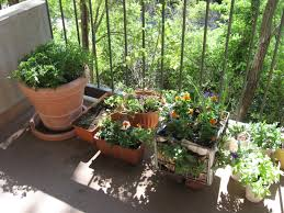 the balcony garden at view liberty 002