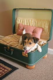 Shabby Chic Dog Bed by Best 25 Dog Beds Ideas On Pinterest Dog Bed Pet Beds For Dogs