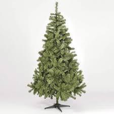 colorado slim spruce tree 6ft by snowtime co uk kitchen