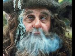 radagast mushrooms n weed w sylvester mccoy christopher lee the