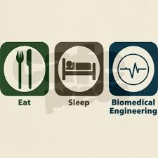 resume exle for biomedical engineers creations of grace 53 best biomedical engineering images on pinterest career